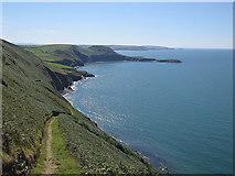 SN3456 : Ceredigion coast path between Cwmtydu and Llangrannog by Rudi Winter