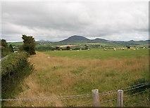SH2332 : Sheep pastures at Ty Rattan Farm by Eric Jones