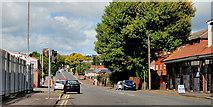 J3475 : The Limestone Road, Belfast by Albert Bridge