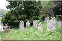 SO2160 : Headstones by the footpath by Bill Nicholls
