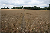 SK7628 : Public footpath to Hose by Kate Jewell