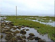 NU0842 : Beal Sands by Oliver Dixon