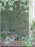 SO2160 : The bench mark on St Mary's by Bill Nicholls