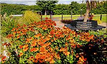 J4792 : One-World Garden, Whitehead by Albert Bridge