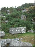 SX5373 : Quarry by Heckwood Tor by David Smith