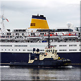 J3576 : Tug 'Willowgarth' at Belfast by Rossographer