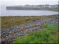 NM7236 : Shingle beach at Craignure by C Michael Hogan