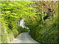 SX2863 : Road to Trehane by Jonathan Billinger