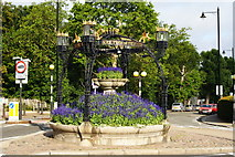TQ1873 : Floral Display  on Richmond Hill by Peter Trimming