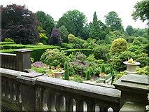 SJ8959 : Residents' garden seen from the terrace by Roy Haworth