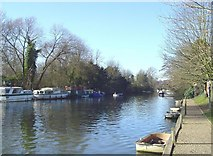 TG2608 : The New Cut of the River Yare by Adrian S Pye