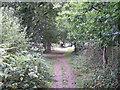 SU5012 : Footpath to Hedge End by Richard Dorrell