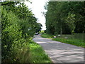 SE8142 : Minor road towards Thorpe le Street by JThomas
