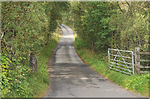 NN3528 : Road from Auchtertyre Farm by Steven Brown