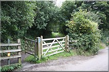 SW8243 : Cycle Track at Old Falmouth Road by Graham Loveland