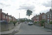 SE5023 : Middle Lane - Weeland Road by Betty Longbottom