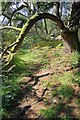 SD4990 : Footpath, Helsington Barrows by Mick Garratt