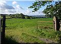 SD4695 : Field near Crook by Derek Harper