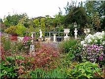 NZ1263 : Bradley Nursery & Gardens, Sled Lane, Wylam by Andrew Curtis