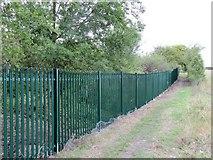SU5985 : The new fence by Bill Nicholls