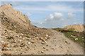 SX2769 : St Cleer: waste dumps by Martin Bodman
