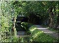 SJ9003 : Staffordshire and Worcestershire Canal at Fordhouses, Wolverhampton by Roger  Kidd