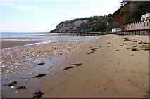 SZ5881 : The beach by Shanklin Chine by Steve Daniels