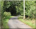 ST6263 : 2010 : Birchwood Lane heading north by Maurice Pullin