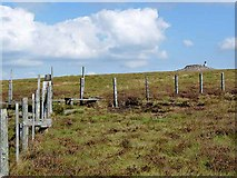 NT8515 : Summit of Windy Gyle by Oliver Dixon