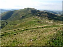 NT8524 : Pennine Way at Birky Knowe by Oliver Dixon