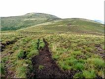 NT8720 : Pennine Way at Birnie Brae by Oliver Dixon