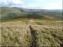 NT8722 : Pennine Way below the Schil by Oliver Dixon