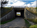 NZ4612 : Tunnel under the A19, taken from the south side of the A19 by Graham Scarborough