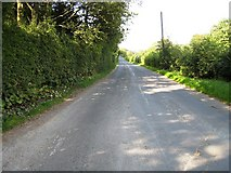 SE7296 : New Road - Rosedale Abbey by Philip Barker