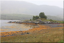 NM6356 : Shoreline of Loch Teacuis near Caolas Rahuaidh by Michael Jagger