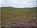 NG3652 : Clamadal Moorland by Richard Dorrell