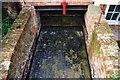 TM0458 : Alton Watermill - Channel by Ashley Dace