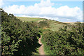 SX4248 : Maker with Rame: on the South West Coast Path by Martin Bodman