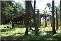 NR8788 : Viewing platform in Blarbuie Woodland by Patrick Mackie
