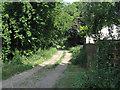 TL5972 : Footpath to Soham by Hugh Venables