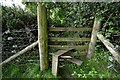 SS4838 : A stile in the corner of a field between Blackwell Wood and Castle Lane by Roger A Smith