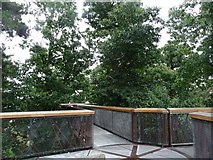 TQ1876 : Viewing platform in the trees by Christine Johnstone
