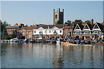 SU7682 : The west bank of the River Thames at Henley-on-Thames by Matthew Bristow