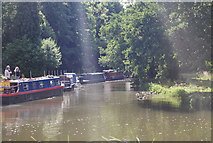 SU9946 : Narrowboats on the South Wey by N Chadwick