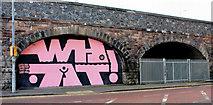 J3473 : Railway arches, Belfast (1) by Albert Bridge