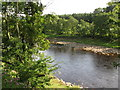 NY7263 : The River South Tyne at Whitchester by Mike Quinn