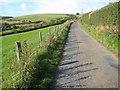SO2286 : Road above Cwm Moch by Philip Halling