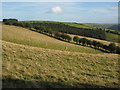 SO2386 : Farmland above Barretts in the Clun Forest. by Philip Halling