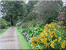 SD4615 : The gardens of Rufford Old Hall by Sarah Charlesworth