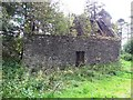 G9983 : Ruined building at Tawnaghlaghan by Kenneth  Allen